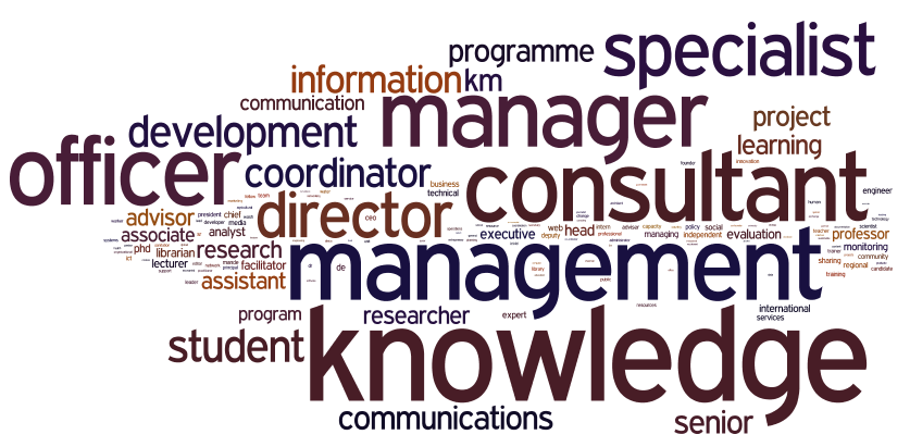 Fig-6-ning-job-title-wordle